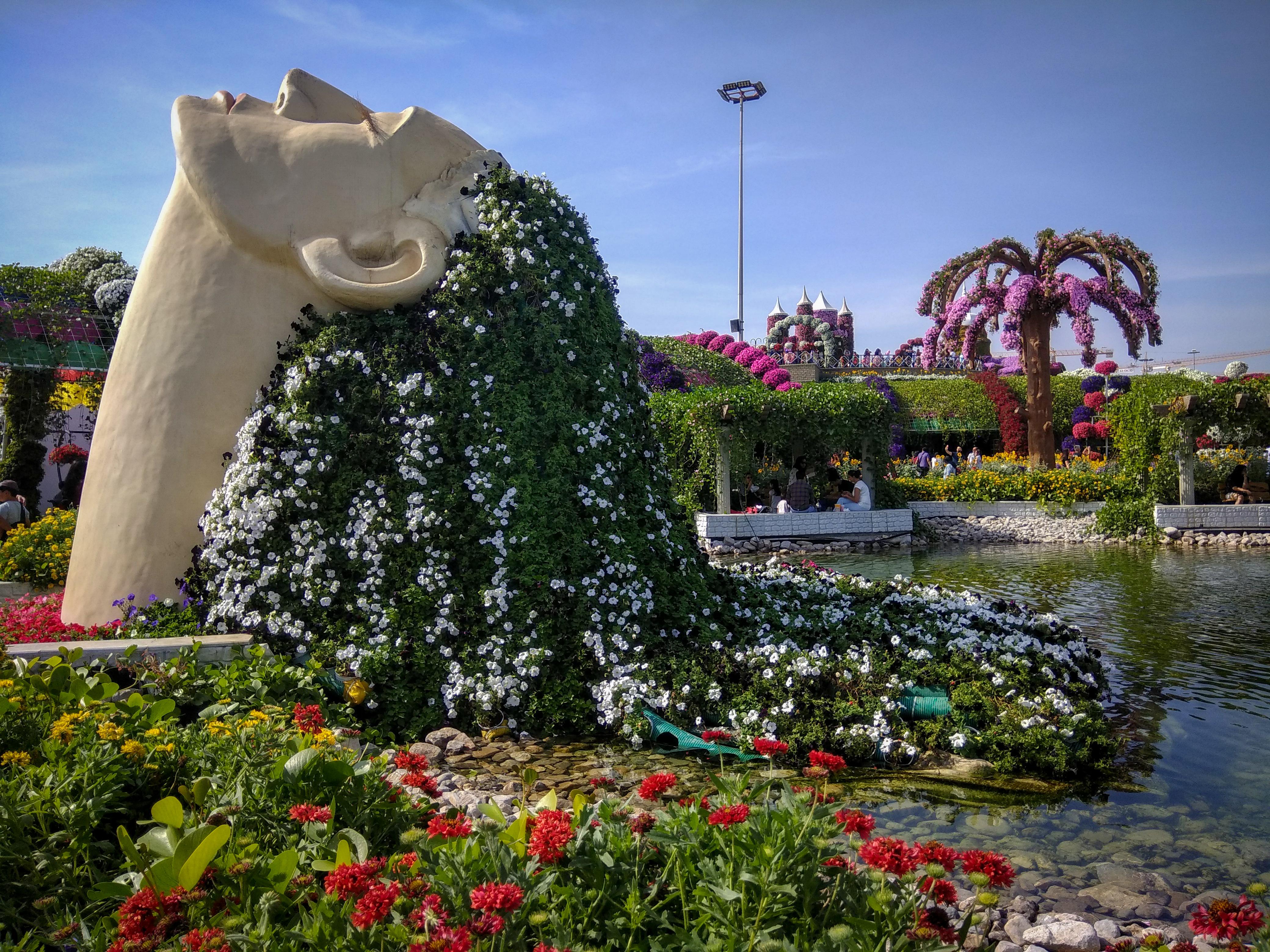 Dubai Miracle Garden Woman Someday Nomadic